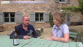 Itinérance viticole en Saône-et-Loire - Reportage - @tvdeschefs - @smartrezo