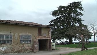 Lauragumes, Frederic Castanet, agriculteur engagé à Maureville (Haute Garonne)