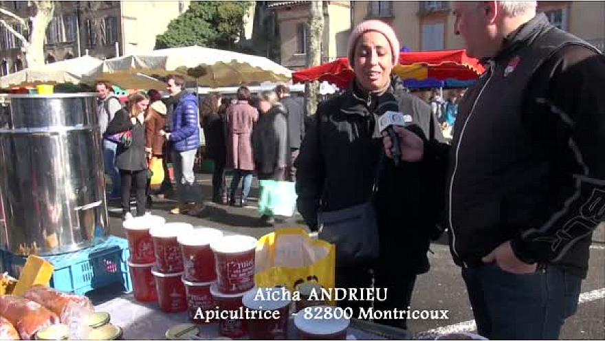 Annuaire Circuit-Court.Localinfo.fr : Apicultrice à Montricoux dans le Tarn-et-Garonne